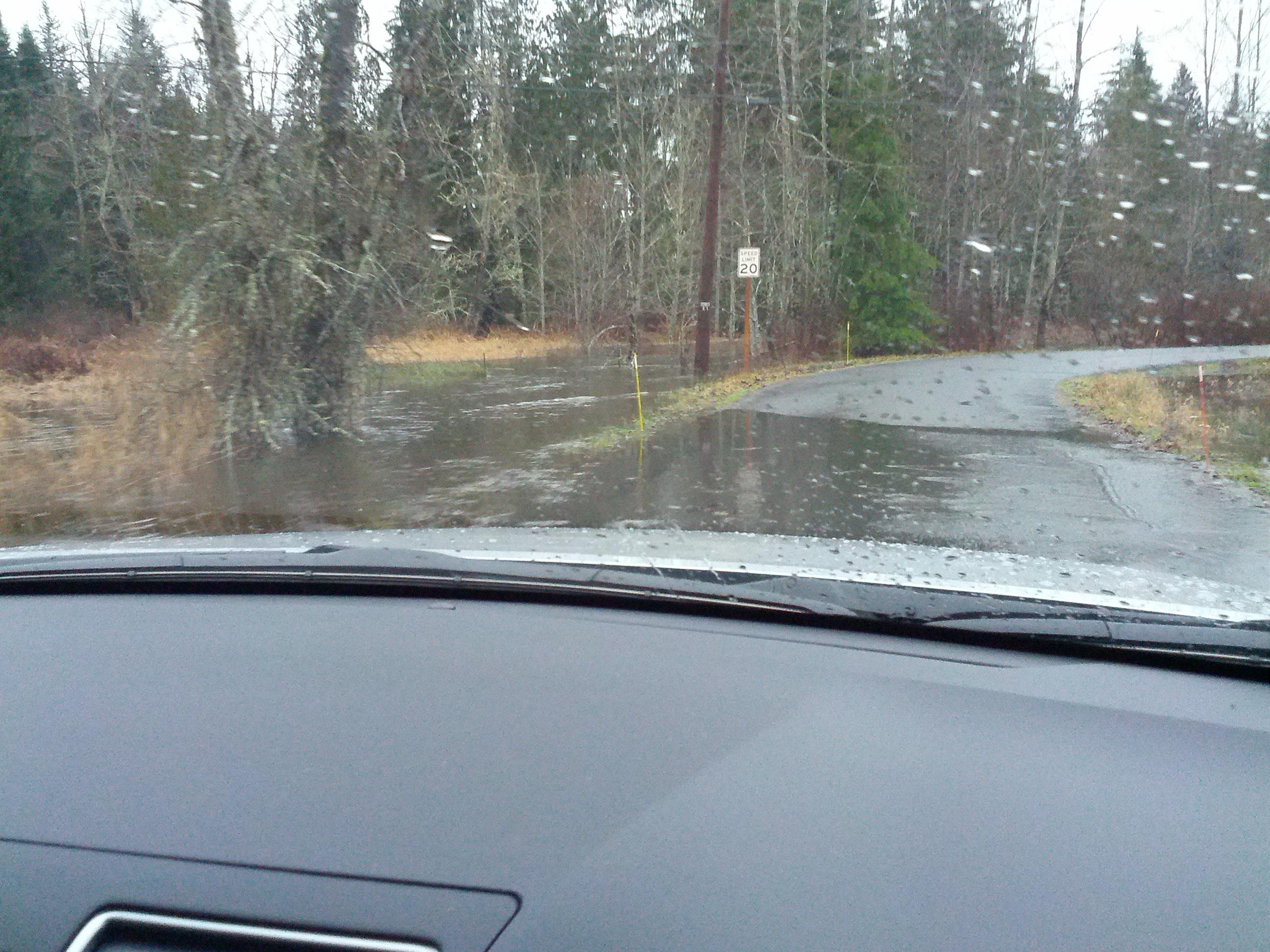 flooded Carpenter Creek on Jan 5th