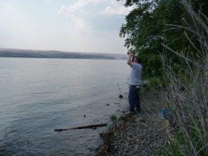 800px-fishing