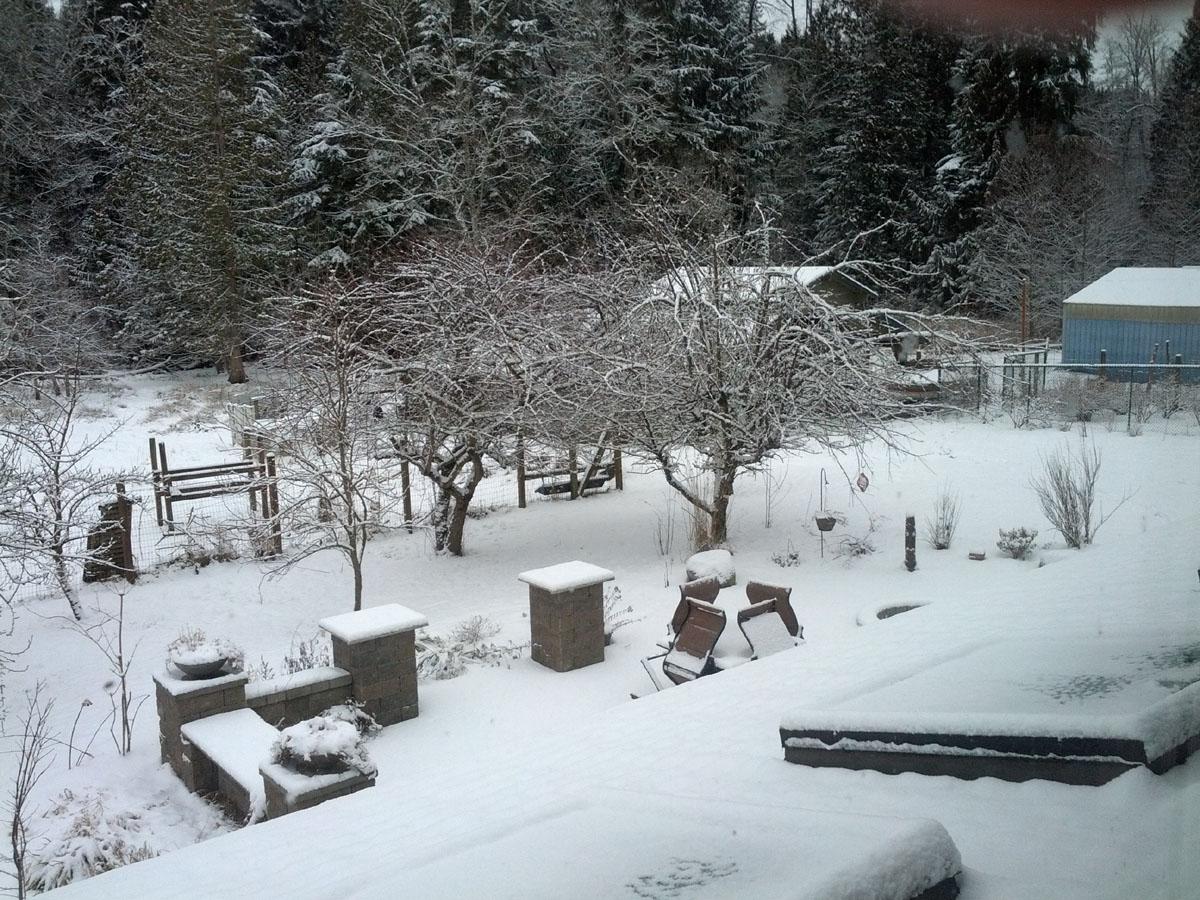 1st snow of the season on Feb 9th